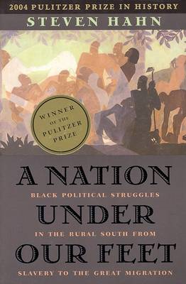 A Nation Under Our Feet: Black Political Struggles in the Rural South from Slavery to the Great Migr (BOK)