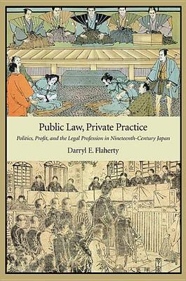 Public Law, Private Practice (BOK)