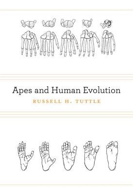 Apes and Human Evolution (BOK)