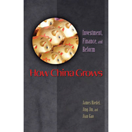 How China Grows: Investment, Finance, and Reform (BOK)