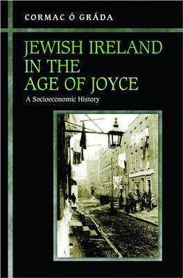 Jewish Ireland in the Age of Joyce: A Socioeconomic History (BOK)