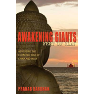 Awakening Giants, Feet of Clay: Assessing the Economic Rise of China and India (BOK)