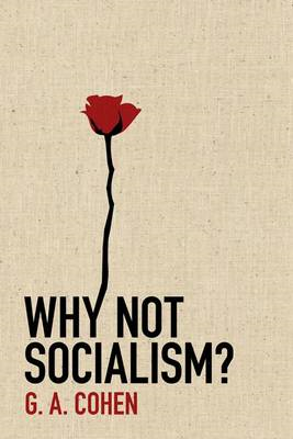 Why Not Socialism? (BOK)