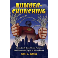 Number-Crunching: Taming Unruly Computational Problems from Mathematical Physics to Science Fiction (BOK)