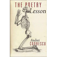 The Poetry Lesson (BOK)