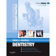 Saunders Solutions in Veterinary Practice: Small Animal Dent (BOK)