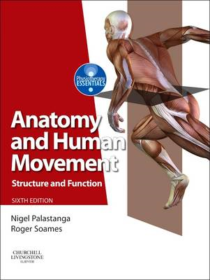 Anatomy and Human Movement (BOK)