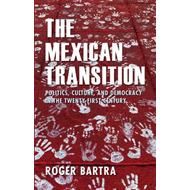 The Mexican Transition: Politics, Culture and Democracy in the Twenty-first Century (BOK)