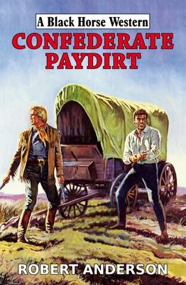 Confederate Paydirt (BOK)