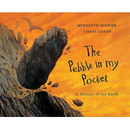 Pebble in My Pocket (BOK)