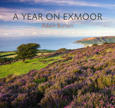 A Year on Exmoor (BOK)