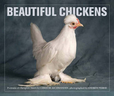 Beautiful Chickens (BOK)
