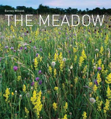The Meadow (BOK)