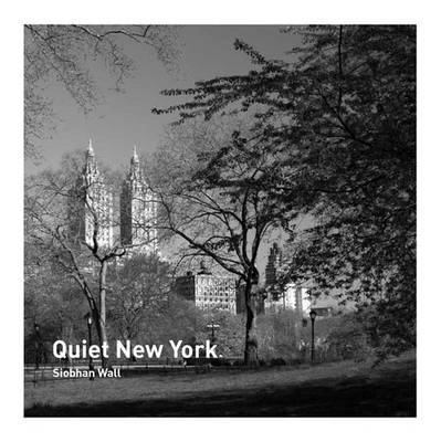 Quiet New York (BOK)
