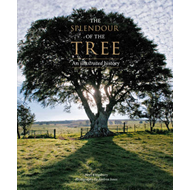 Splendour of the Tree (BOK)