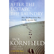 After The Ecstasy, The Laundry (BOK)