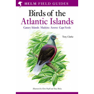 Field Guide to the Birds of the Atlantic Islands (BOK)