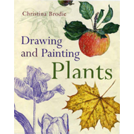 Drawing and Painting Plants (BOK)