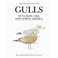 Gulls of Europe, Asia and North America (BOK)