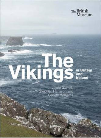 Vikings in Britain and Ireland (BOK)