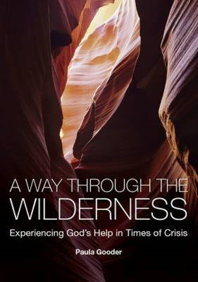 A Way Through the Wilderness: Experiencing God's Help in Times of Crisis (BOK)