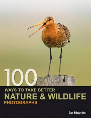 100 Ways to Take Better Nature & Wildlife Photographs (BOK)