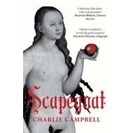 Scapegoat: A History of Blaming Other People (BOK)
