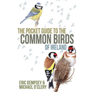 Pocket Guide to the Common Birds of Ireland (BOK)