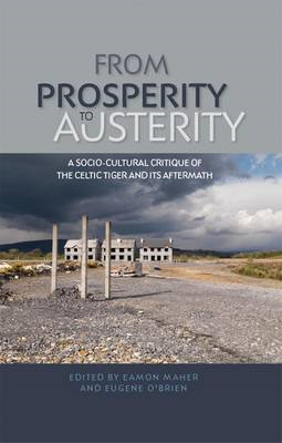 From prosperity to austerity: A Socio-cultural Critique of the Celtic Tiger and its Aftermath (BOK)