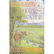 Produktbilde for Between the Woods and the Water - On Foot to Constantinople from the Hook of Holland: The Middle Dan (BOK)