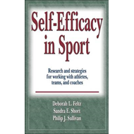 Self-efficacy in Sport (BOK)