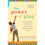 Power of Play (BOK)