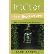 Intuition for Beginners (BOK)