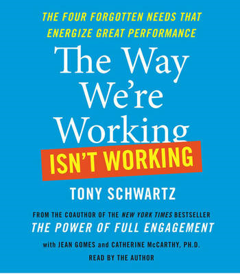 The Way We're Working Isn't Working (BOK)