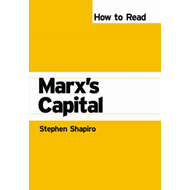 "How to Read Marx's ""Capital"" (BOK)"