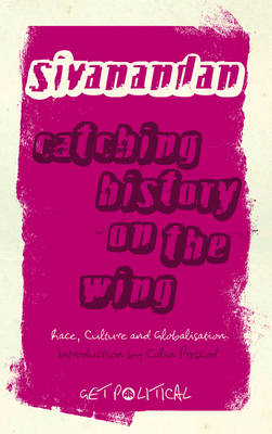 Catching History on the Wing: Race, Culture and Globalisation (BOK)