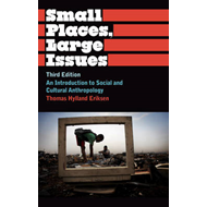 Small Places, Large Issues: An Introduction to Social and Cultural Anthropology (BOK)