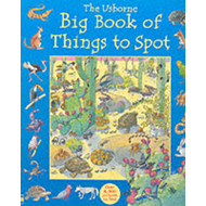 Big Book of Things to Spot (BOK)