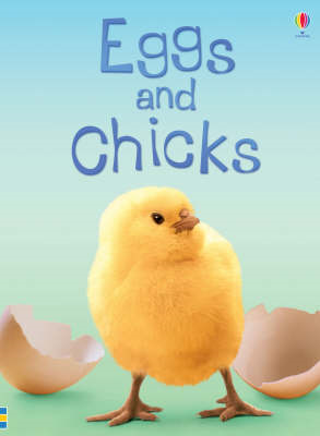 Eggs and Chicks (BOK)