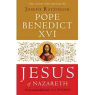 Jesus of Nazareth: From the Baptism in the Jordan to the Transfiguration (BOK)
