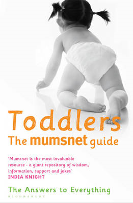 Toddlers: The Answers to Everything (BOK)