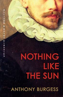 Nothing Like the Sun (BOK)