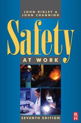 Safety at Work (BOK)