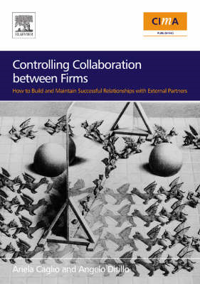 Controlling Collaboration Between Firms: How to Build and Maintain Successful Relationships with Ext (BOK)