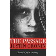 The Passage (BOK)