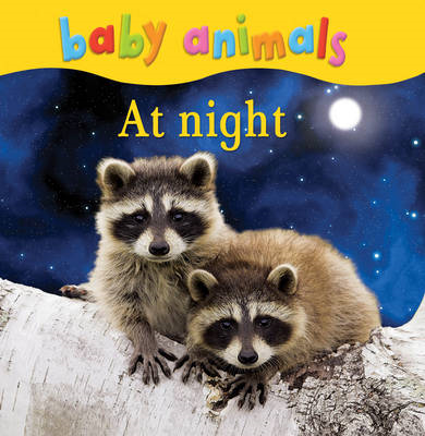 Baby Animals: At Night (BOK)