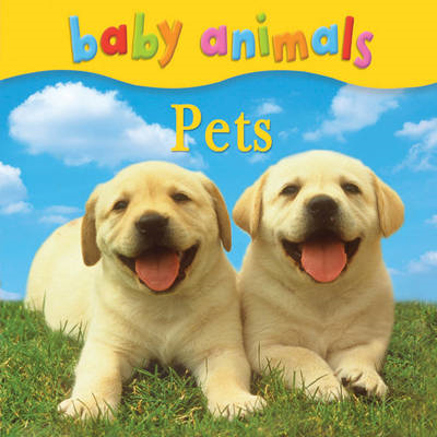 Baby Animals: Pets (BOK)