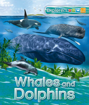 Explorers: Whales and Dolphins (BOK)