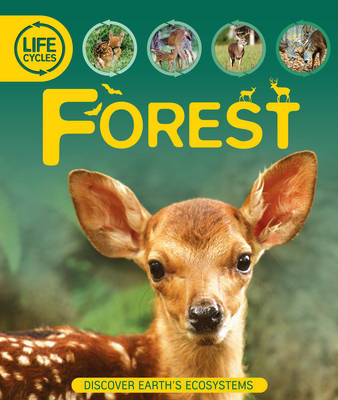 Life Cycles: Forest (BOK)