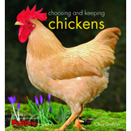 Choosing and Keeping Chickens (BOK)